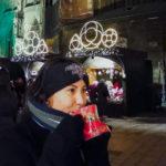 Feirinhas Natal Viena